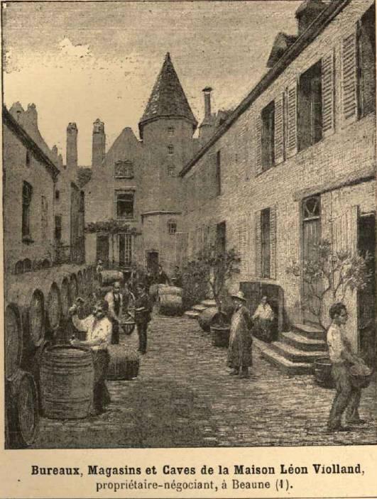 Bureaux et caves Maison Léon Violland